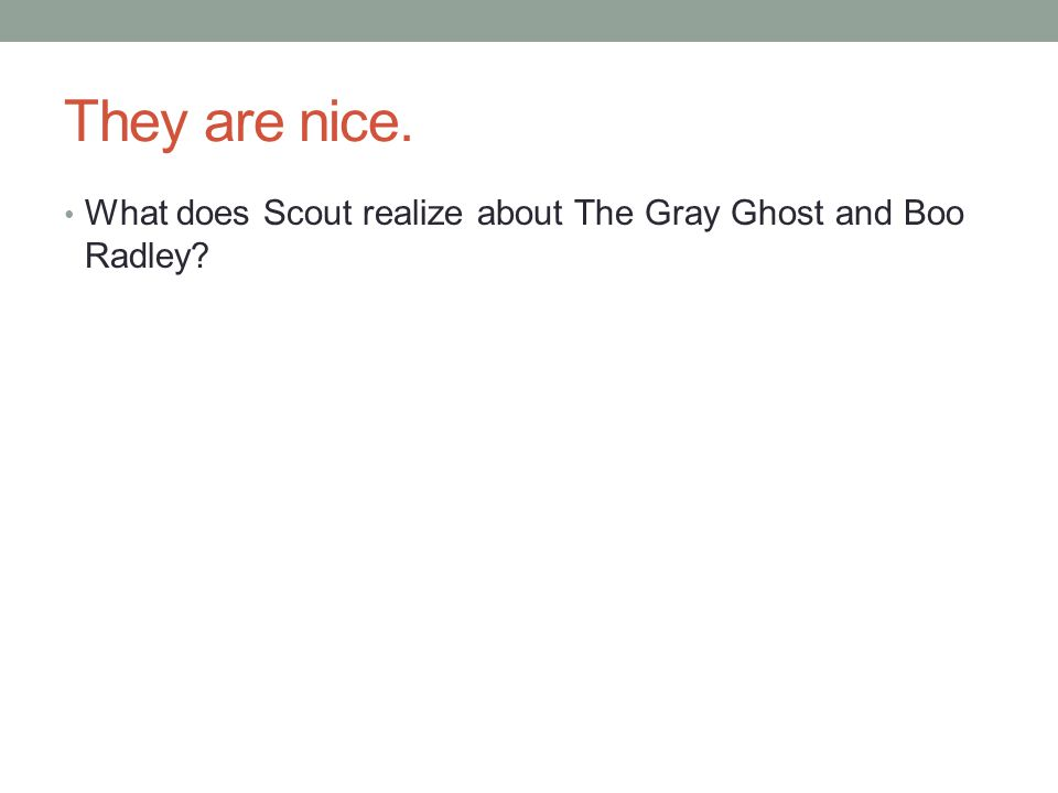 They are nice. What does Scout realize about The Gray Ghost and Boo Radley?