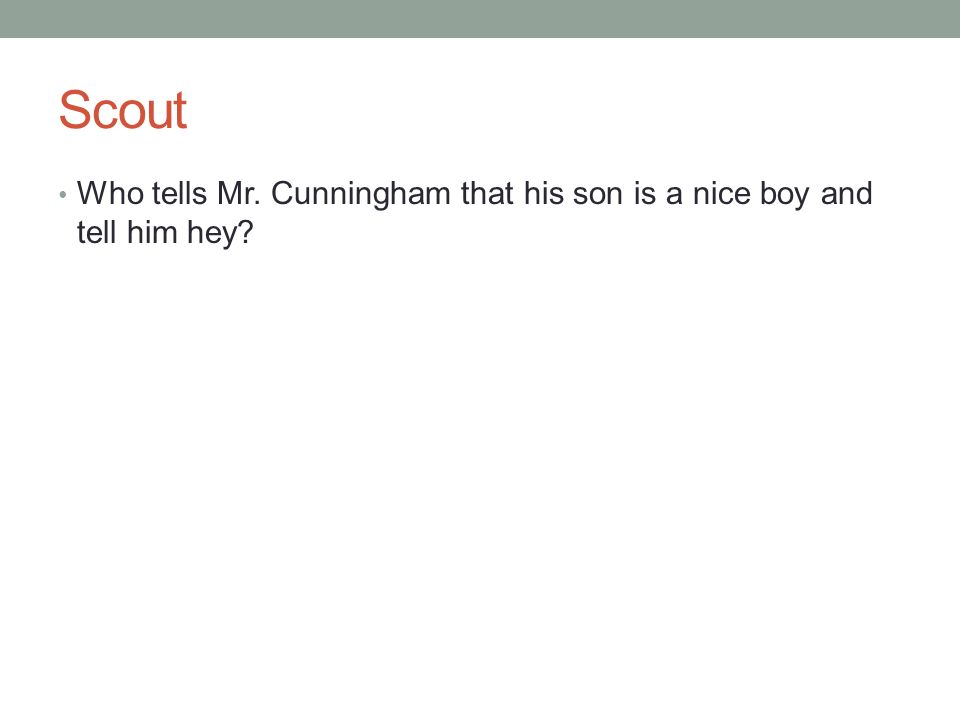 Scout Who tells Mr. Cunningham that his son is a nice boy and tell him hey?
