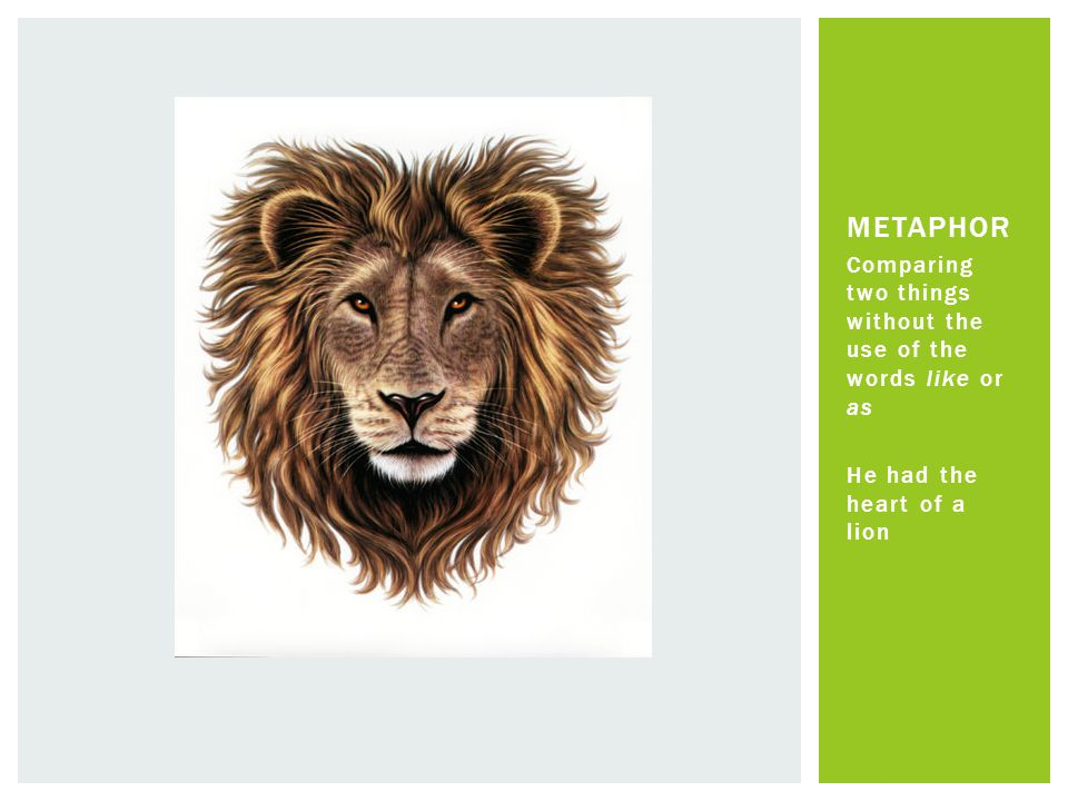 Comparing two things without the use of the words like or as He had the heart of a lion METAPHOR