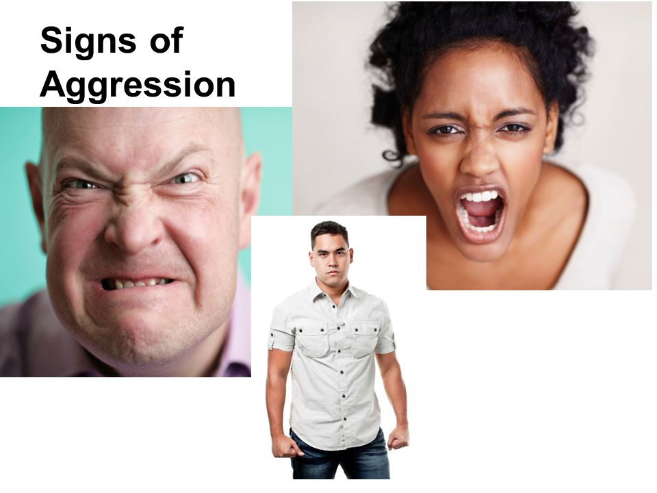 Signs of Aggression