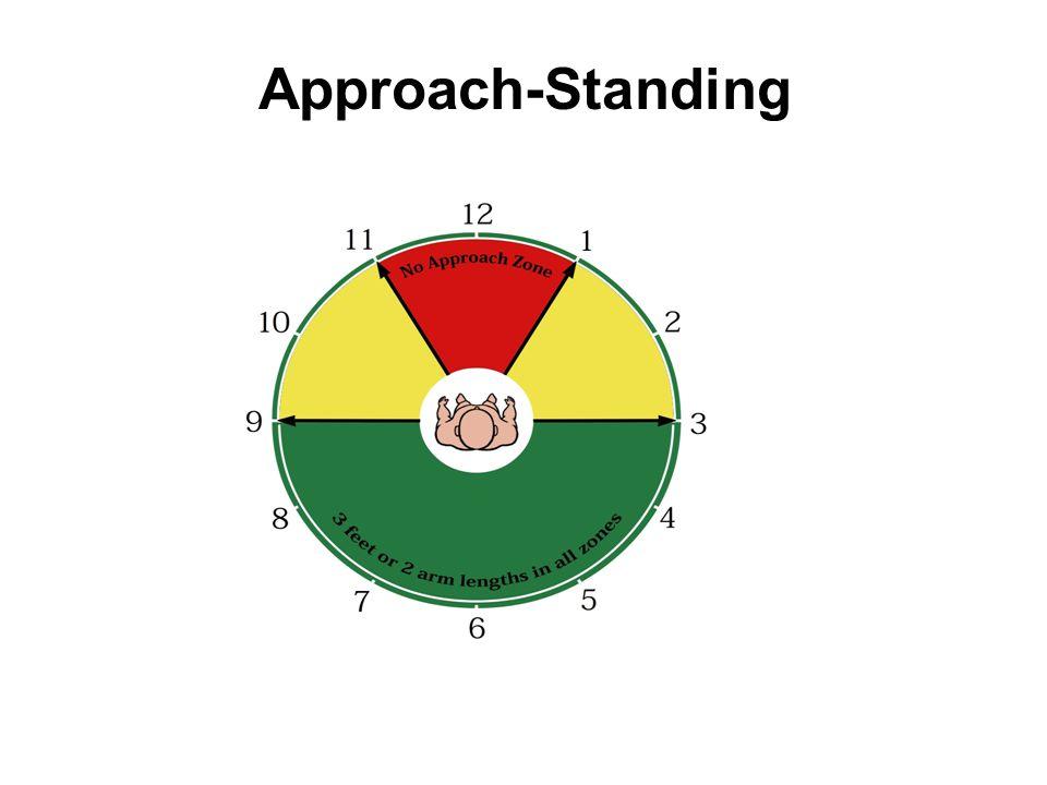 Approach-Standing