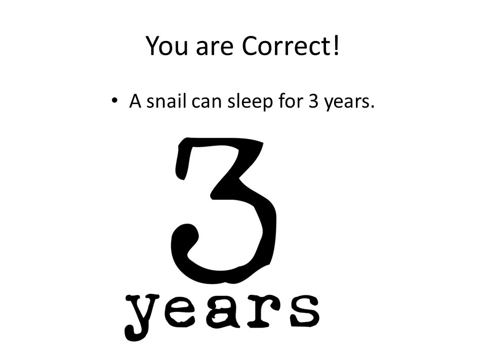 You are Correct! A snail can sleep for 3 years.