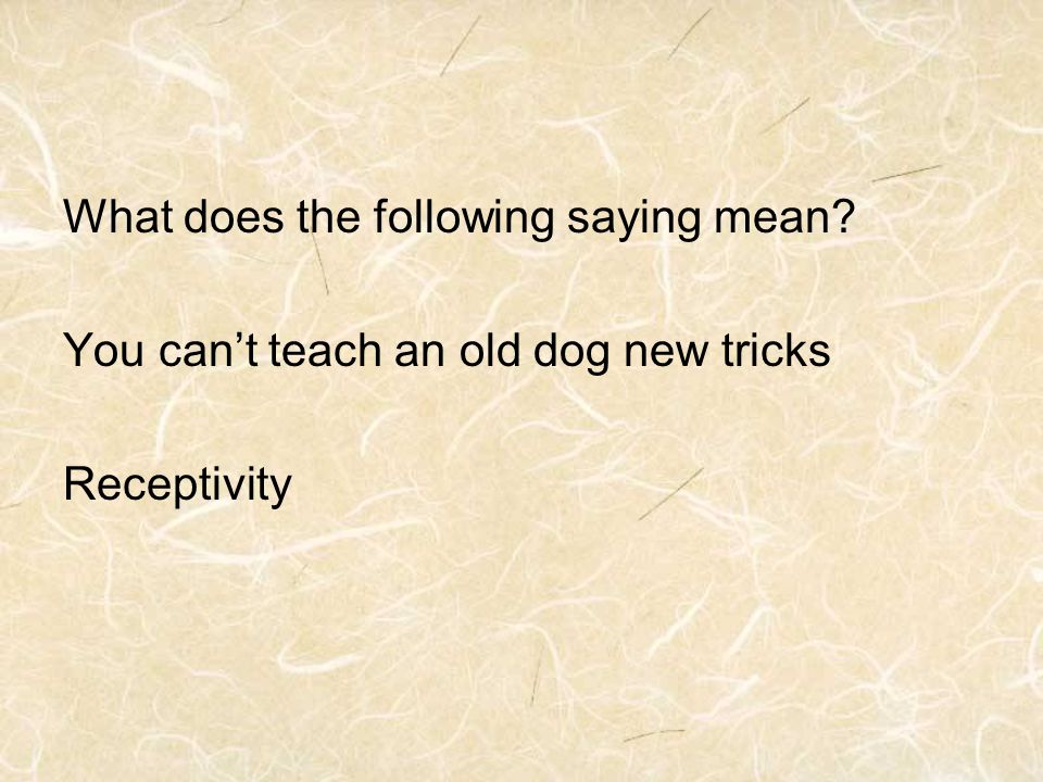 What does the following saying mean You can't teach an old dog new tricks Receptivity