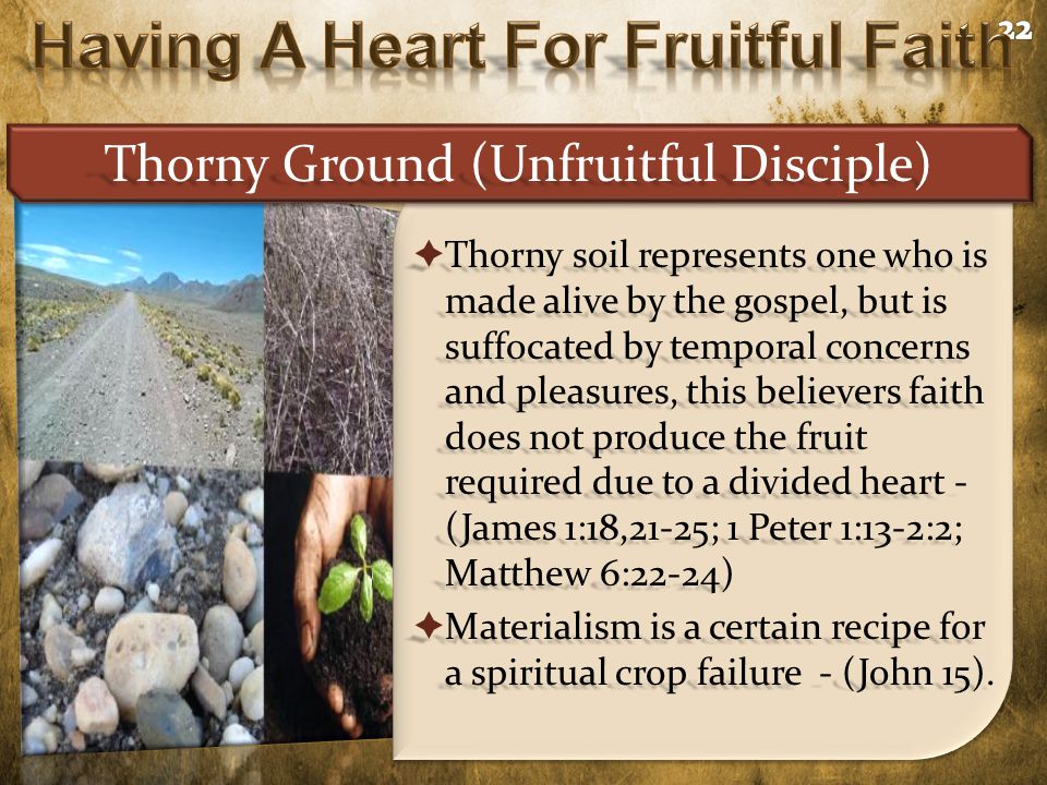  Thorny soil represents one who is made alive by the gospel, but is suffocated by temporal concerns and pleasures, this believers faith does not produce the fruit required due to a divided heart - (James 1:18,21-25; 1 Peter 1:13-2:2; Matthew 6:22-24)  Materialism is a certain recipe for a spiritual crop failure - (John 15).