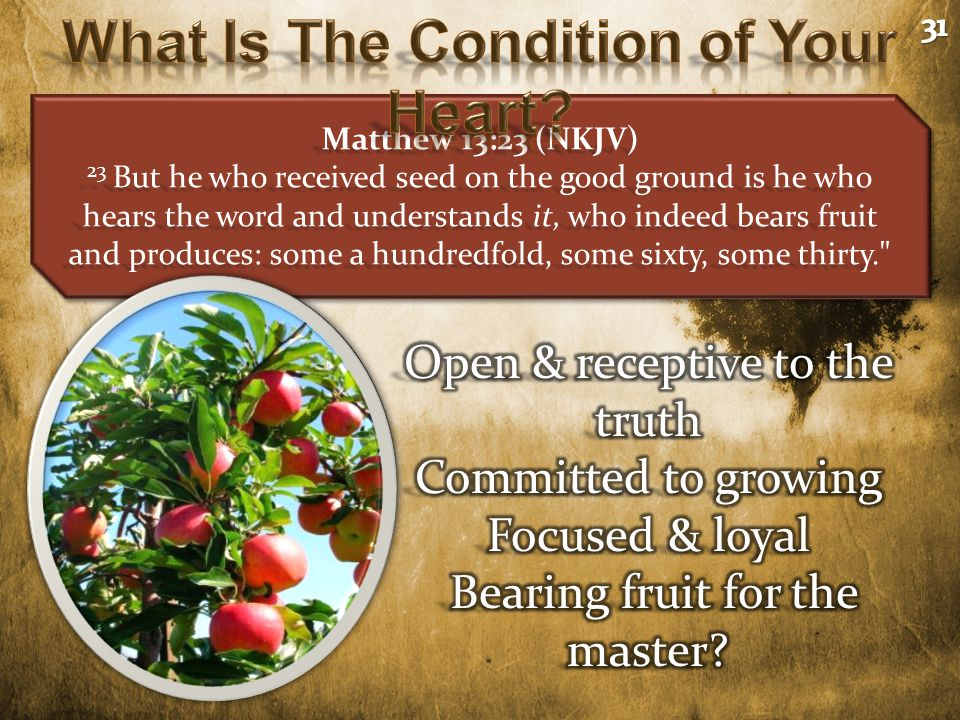 Matthew 13:23 (NKJV) 23 But he who received seed on the good ground is he who hears the word and understands it, who indeed bears fruit and produces: