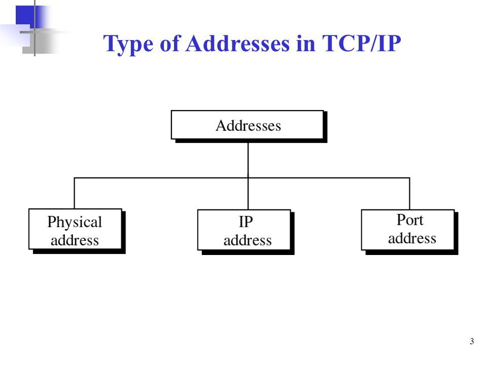 3 Type of Addresses in TCP/IP