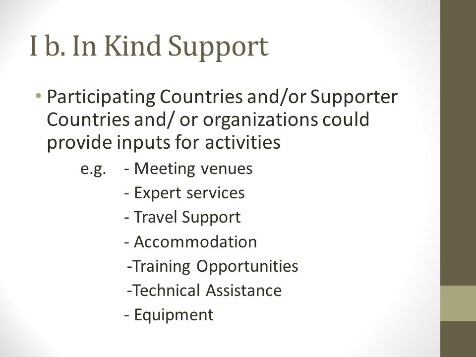 I b. In Kind Support Participating Countries and/or Supporter Countries and/ or organizations could provide inputs for activities e.g. - Meeting venue
