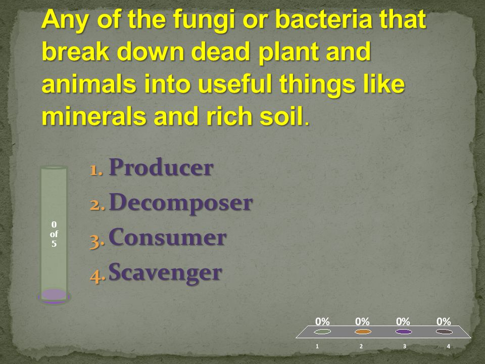 Decomposers – any of the fungi or bacteria that break down dead plant and animals into useful things like minerals and rich soil.
