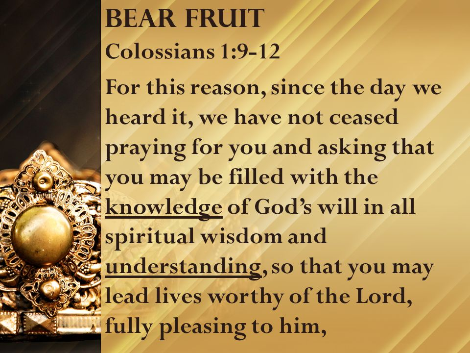 Bear fruit Colossians 1:9-12 For this reason, since the day we heard it, we have not ceased praying for you and asking that you may be filled with the knowledge of God's will in all spiritual wisdom and understanding, so that you may lead lives worthy of the Lord, fully pleasing to him,