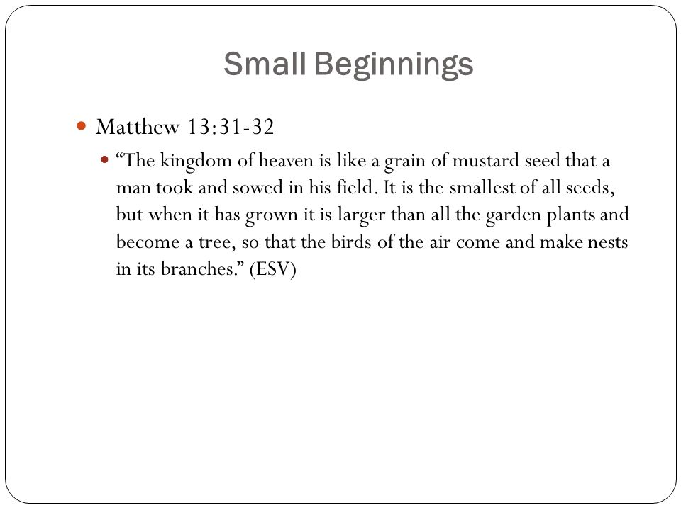 """Small Beginnings Matthew 13:31-32 """"The kingdom of heaven is like a grain of mustard seed that a man took and sowed in his field. It is the smallest of"""