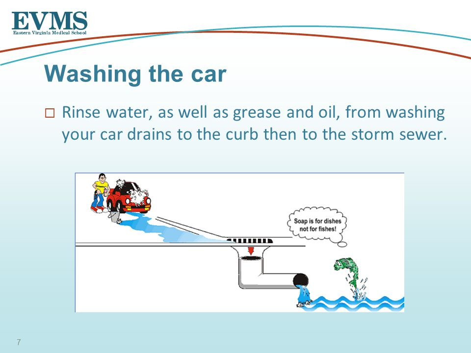  Rinse water, as well as grease and oil, from washing your car drains to the curb then to the storm sewer.
