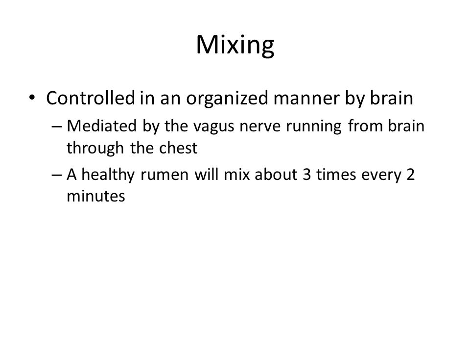Mixing Controlled in an organized manner by brain – Mediated by the vagus nerve running from brain through the chest – A healthy rumen will mix about 3 times every 2 minutes