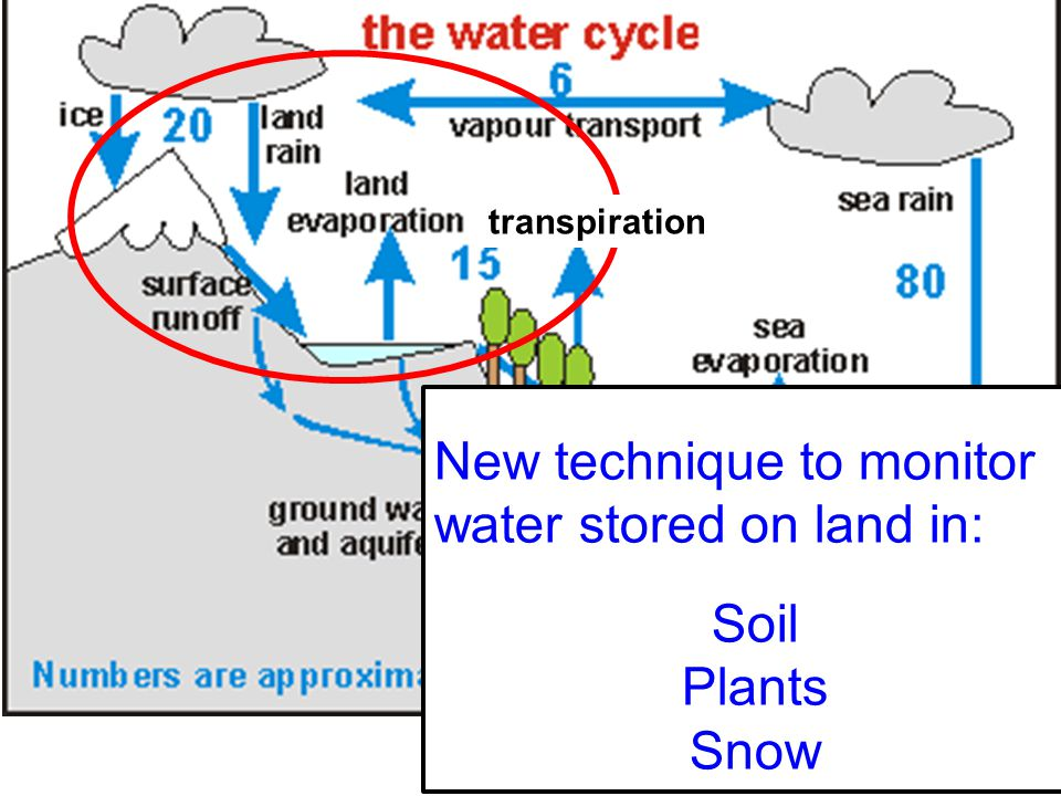New technique to monitor water stored on land in: Soil Plants Snow transpiration