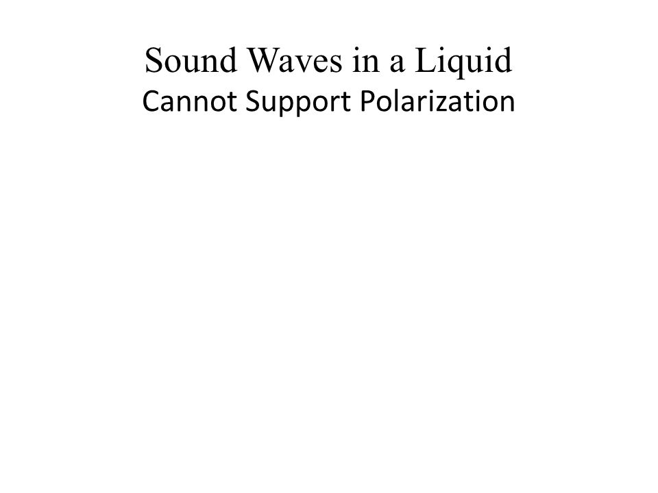 Cannot Support Polarization Sound Waves in a Liquid