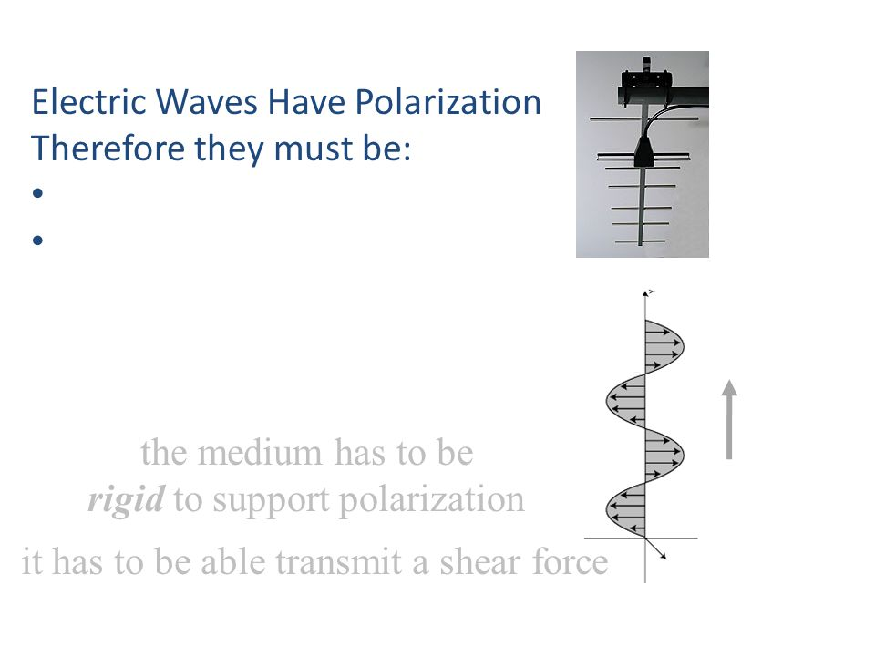 the medium has to be rigid to support polarization Electric Waves Have Polarization Therefore they must be: it has to be able transmit a shear force