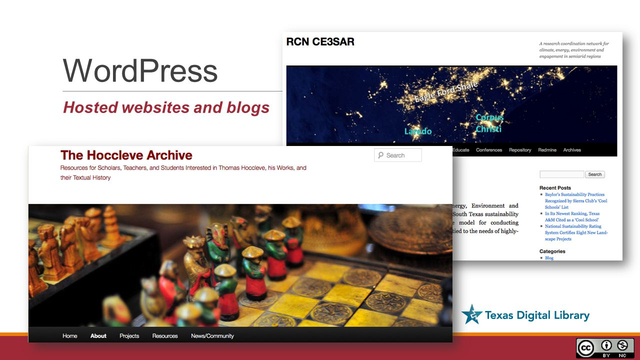 WordPress Hosted websites and blogs