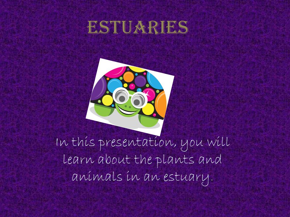 Estuaries In this presentation, you will learn about the plants and animals in an estuary.