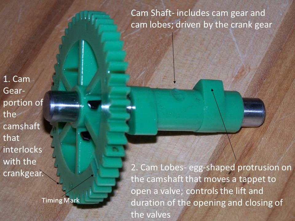 Cam Shaft- includes cam gear and cam lobes; driven by the crank gear 2.