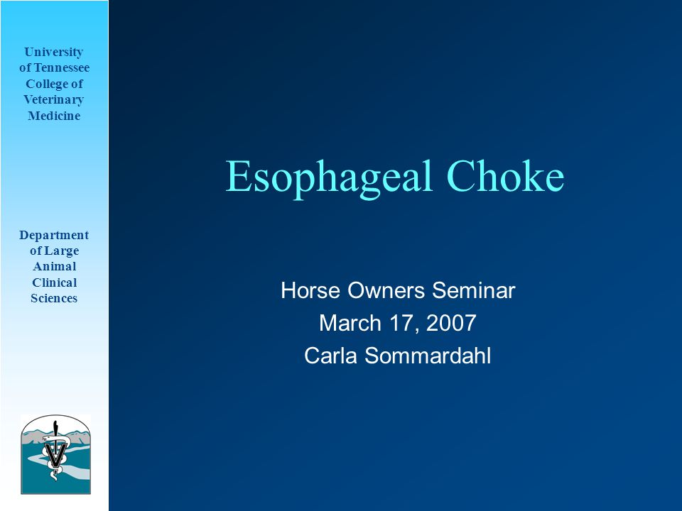 University of Tennessee College of Veterinary Medicine Department of Large Animal Clinical Sciences Esophageal Choke Horse Owners Seminar March 17, 2007 Carla Sommardahl