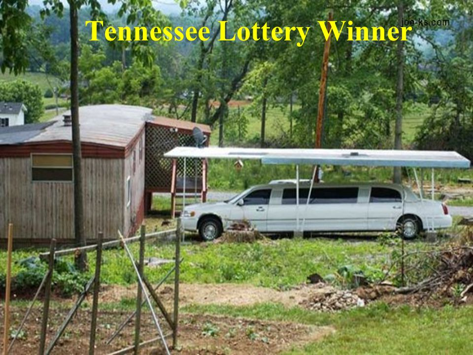 University of Tennessee College of Veterinary Medicine Department of Large Animal Clinical Sciences Tennessee Lottery Winner