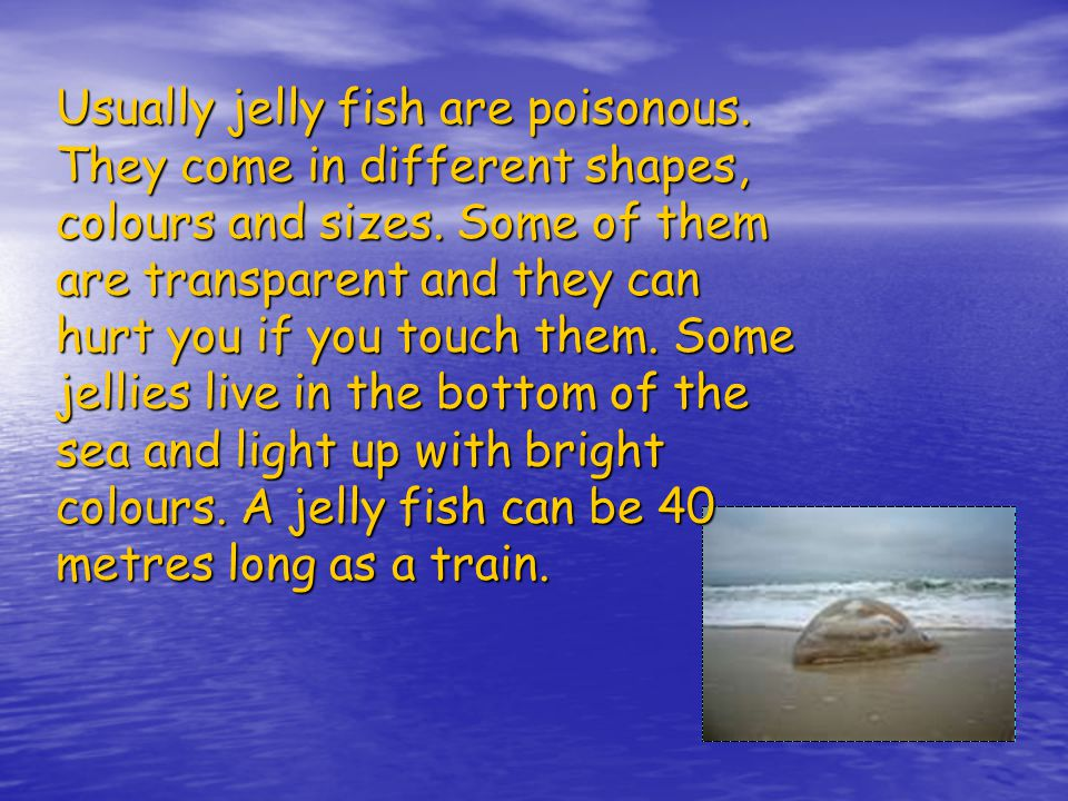 Usually jelly fish are poisonous.They come in different shapes, colours and sizes.