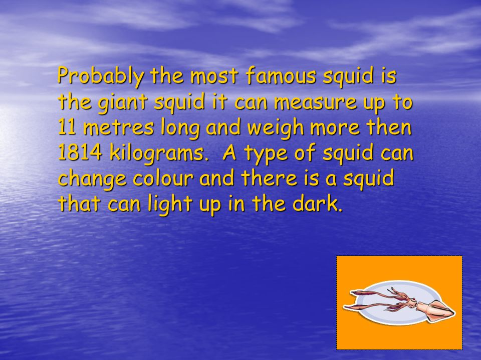 Probably the most famous squid is the giant squid it can measure up to 11 metres long and weigh more then 1814 kilograms.