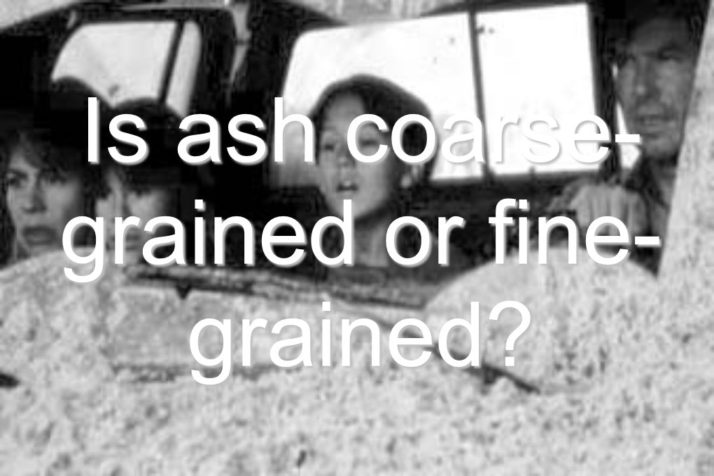 Is ash coarse- grained or fine- grained?