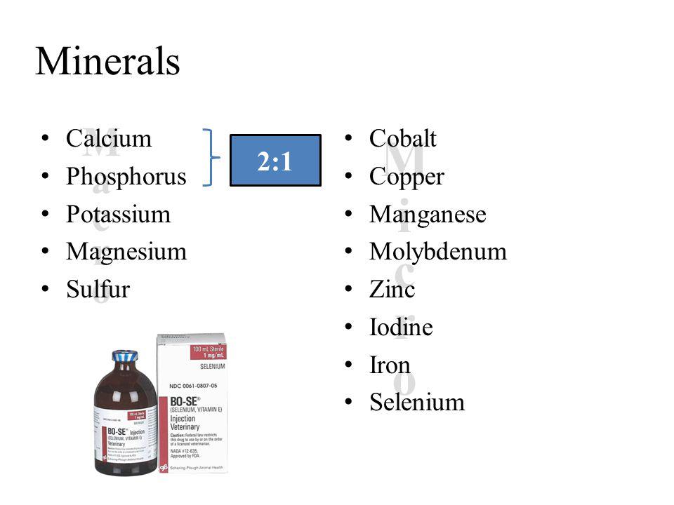 c a M o r c i M o r Minerals Calcium Phosphorus Potassium Magnesium Sulfur Cobalt Copper Manganese Molybdenum Zinc Iodine Iron Selenium 2:1