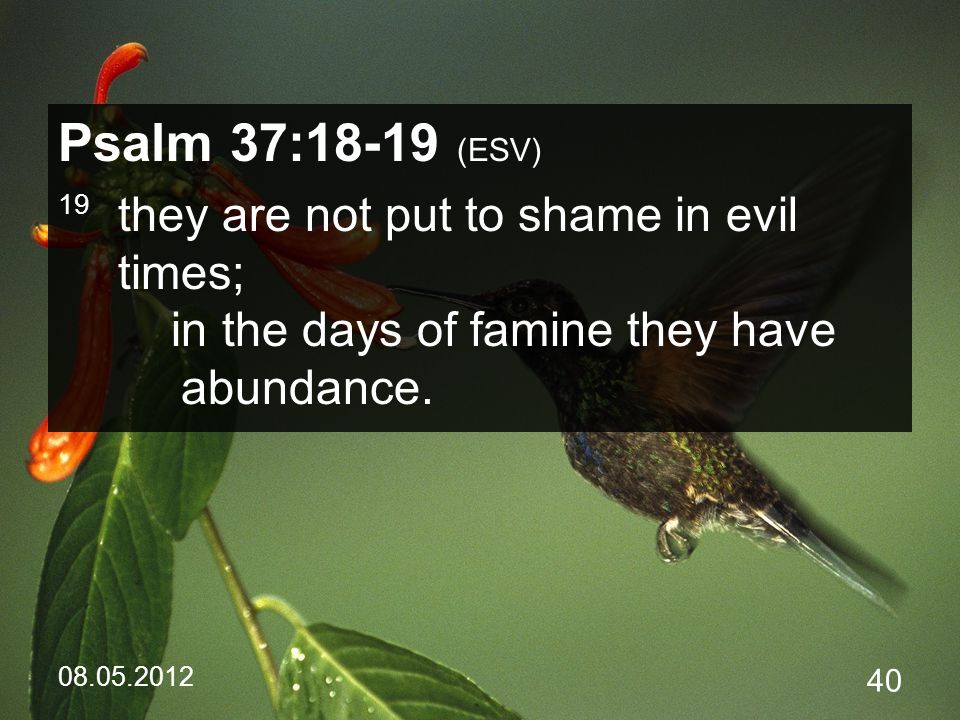 08.05.2012 40 Psalm 37:18-19 (ESV) 19 they are not put to shame in evil times; in the days of famine they have abundance.
