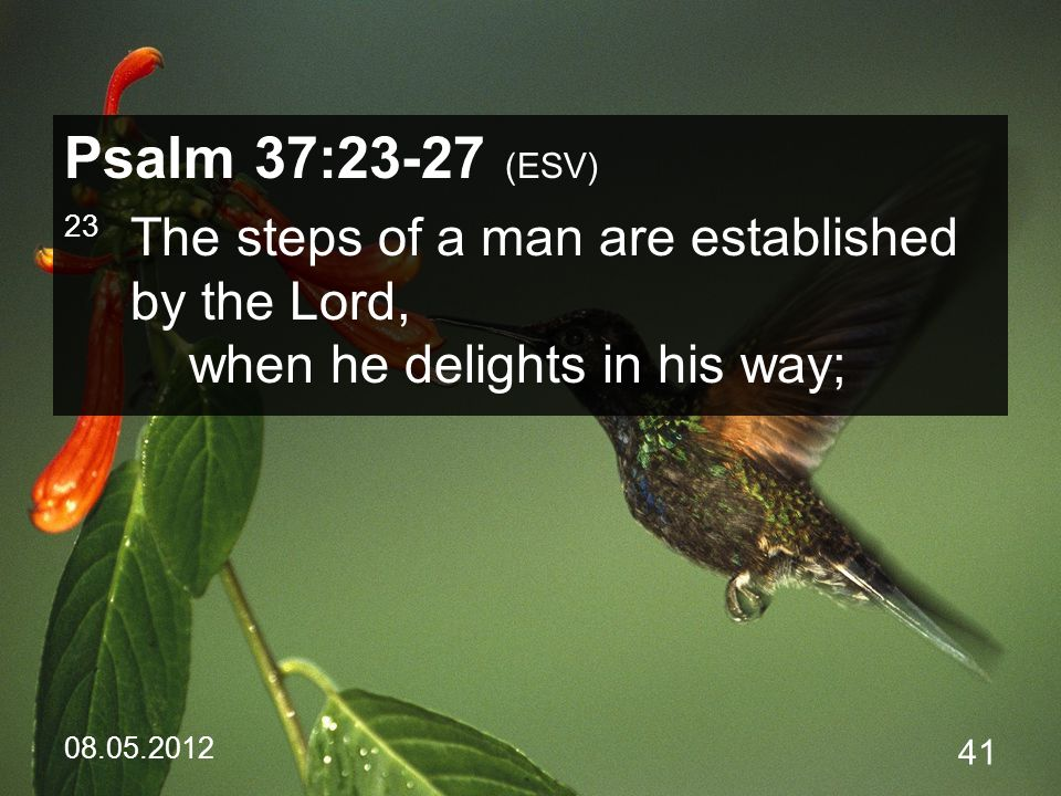 08.05.2012 41 Psalm 37:23-27 (ESV) 23 The steps of a man are established by the Lord, when he delights in his way;