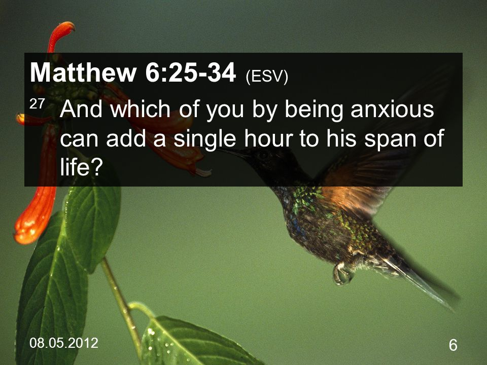08.05.2012 47 Matthew 6:34 (ESV) 34 Therefore do not be anxious about tomorrow, for tomorrow will be anxious for itself.