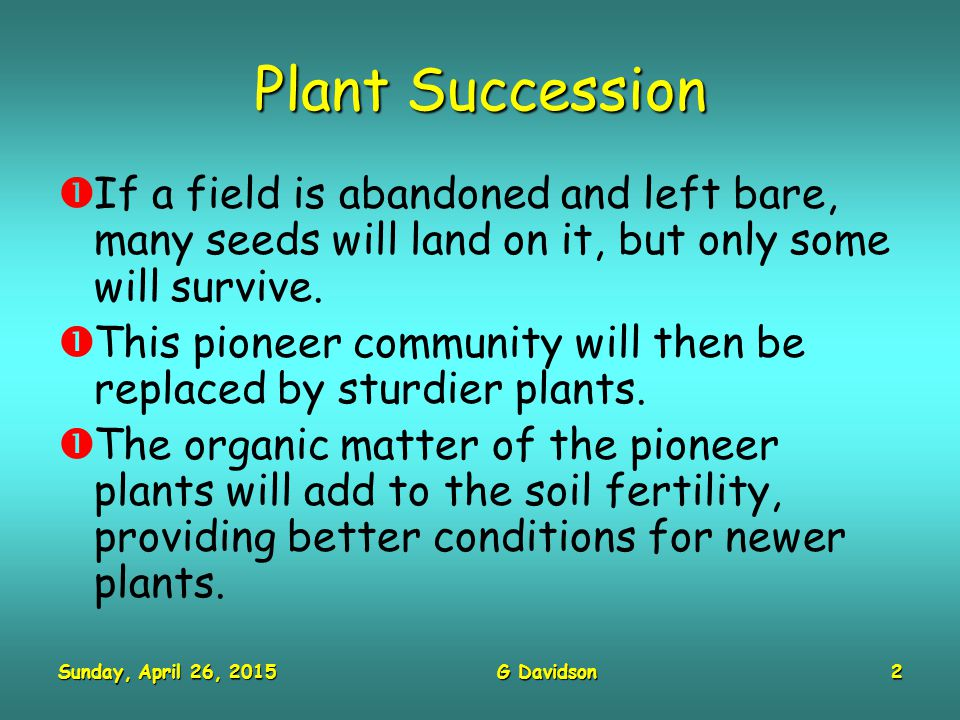 Sunday, April 26, 2015Sunday, April 26, 2015Sunday, April 26, 2015Sunday, April 26, 2015G Davidson3 Plant Succession  Eventually, this process will stop, usually with trees in this country.