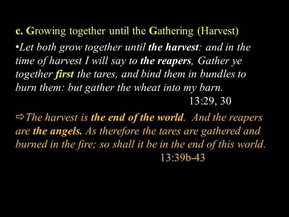 c. Growing together until the Gathering (Harvest) Let both grow together until the harvest: and in the time of harvest I will say to the reapers, Gath