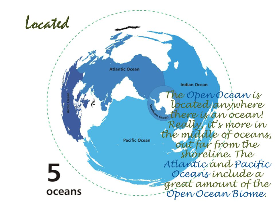 The Open Ocean is located anywhere there is an ocean.