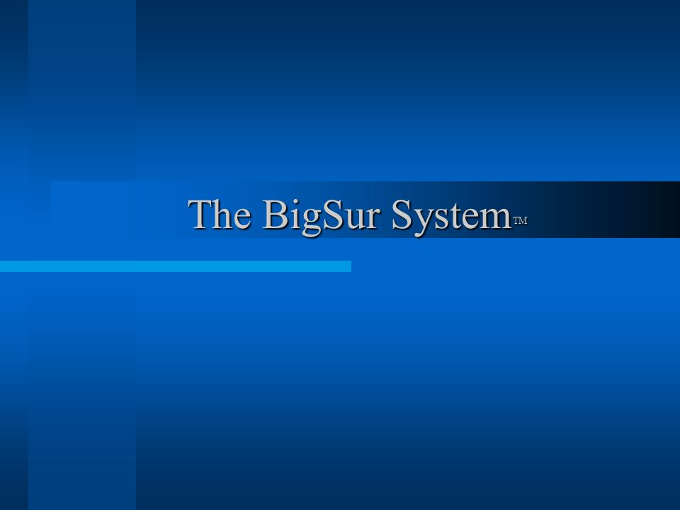 The BigSur System TM