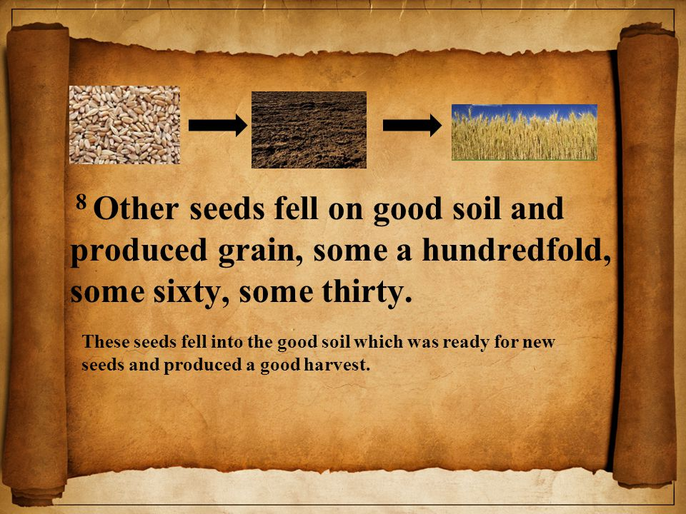 8 Other seeds fell on good soil and produced grain, some a hundredfold, some sixty, some thirty.