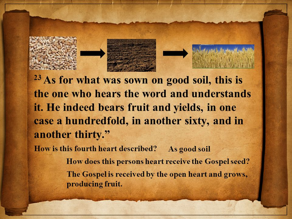 23 As for what was sown on good soil, this is the one who hears the word and understands it. He indeed bears fruit and yields, in one case a hundredfo