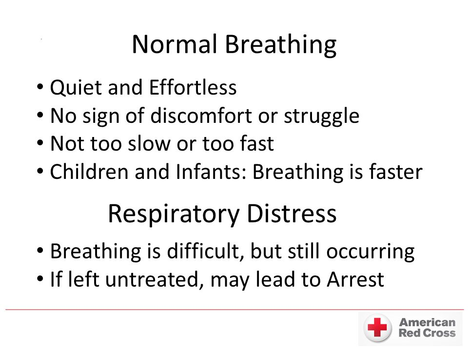 Normal Breathing Quiet and Effortless No sign of discomfort or struggle Not too slow or too fast Children and Infants: Breathing is faster Respiratory Distress Breathing is difficult, but still occurring If left untreated, may lead to Arrest