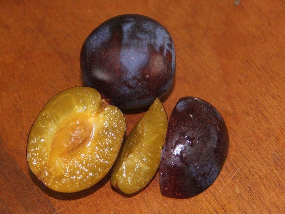 Choke berries, service berries, medlars quinces, Blood oranges, prune plums
