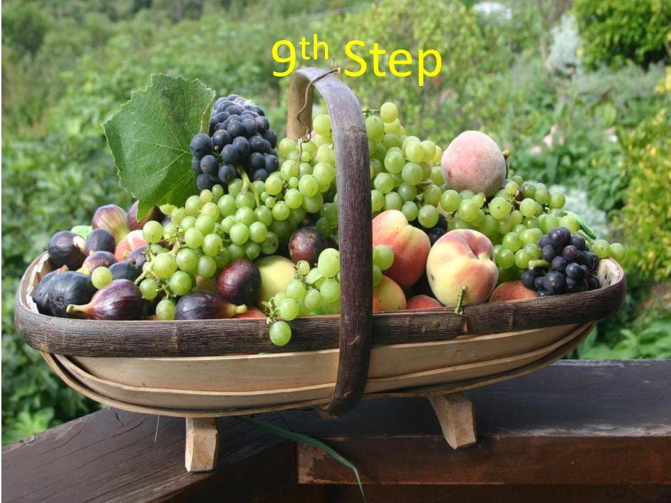 6 th step 9 th Step