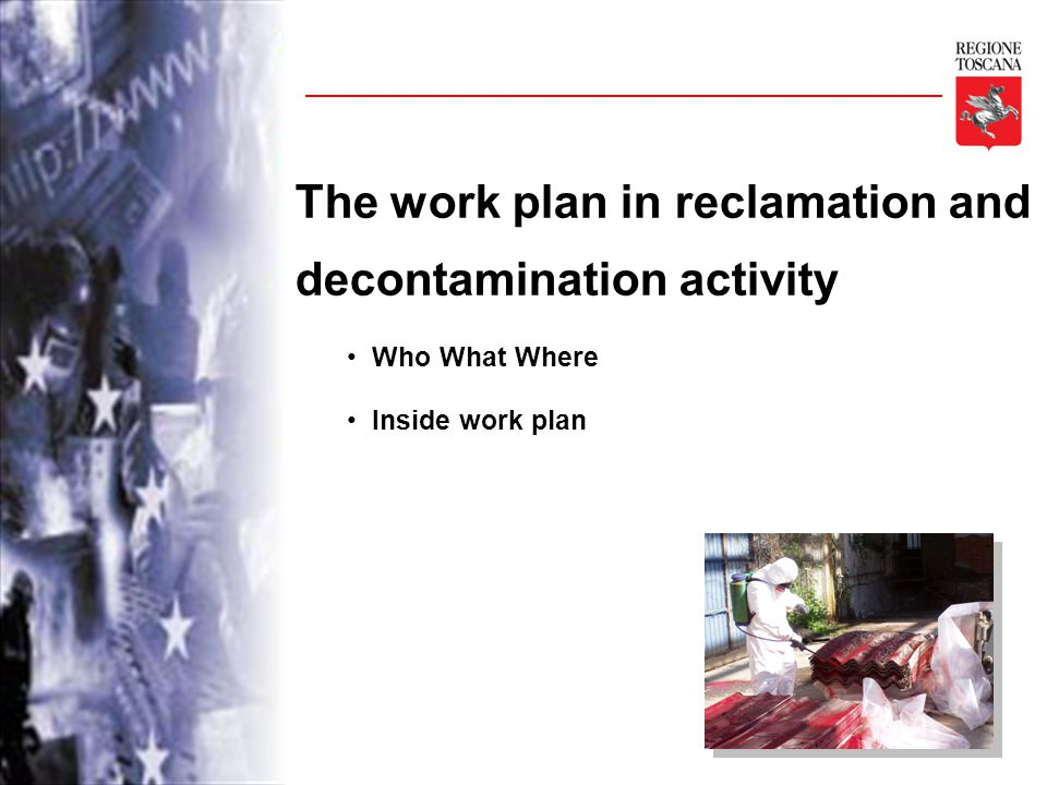 The work plan in reclamation and decontamination activity Who What Where Inside work plan