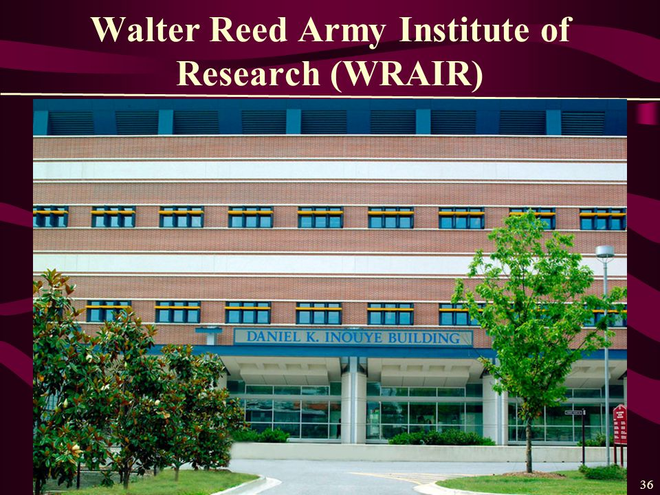 36 Walter Reed Army Institute of Research (WRAIR)