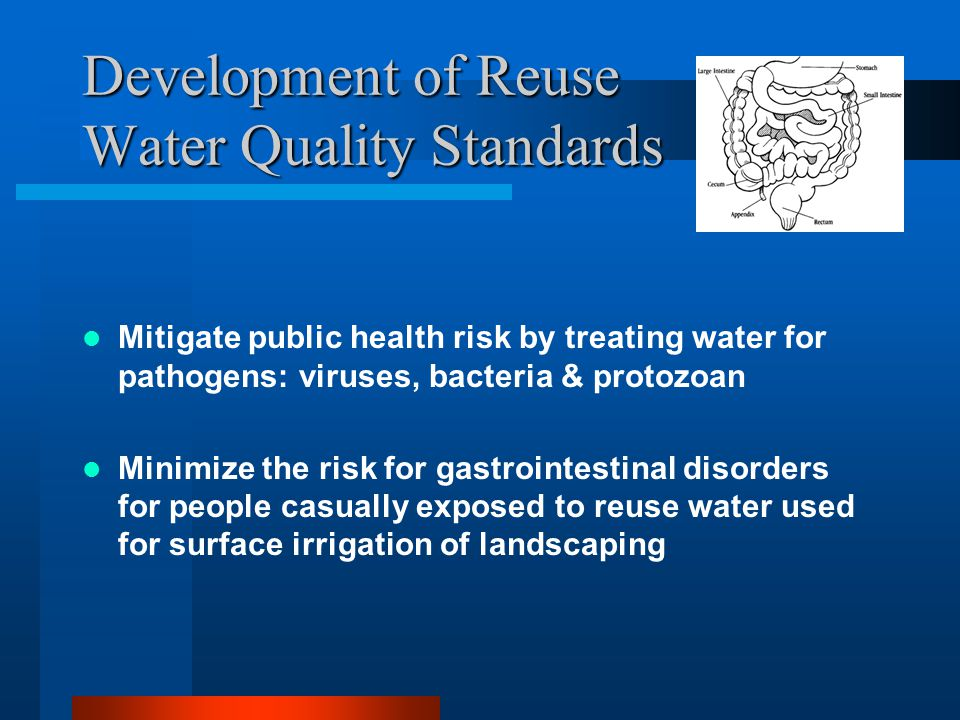 Development of Reuse Water Quality Standards Mitigate public health risk by treating water for pathogens: viruses, bacteria & protozoan Minimize the risk for gastrointestinal disorders for people casually exposed to reuse water used for surface irrigation of landscaping