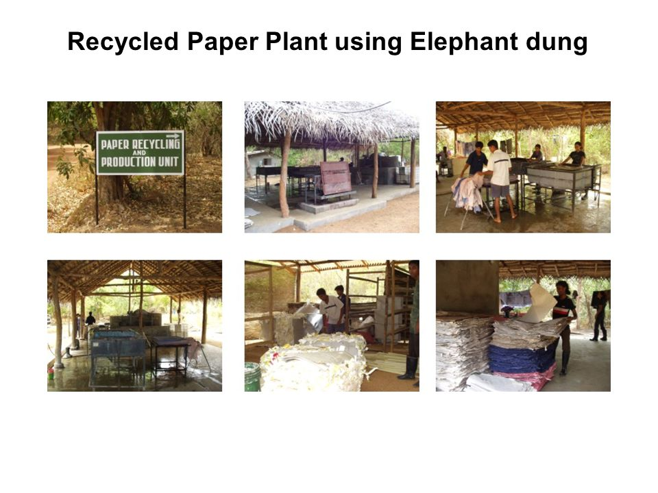 Recycled Paper Plant using Elephant dung