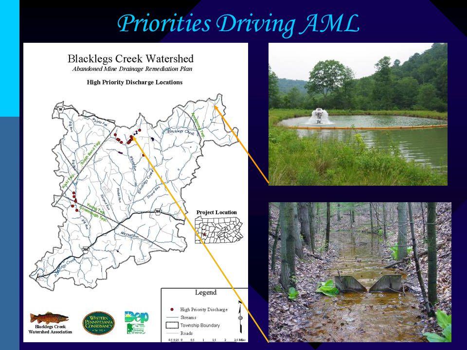 Priorities Driving AML