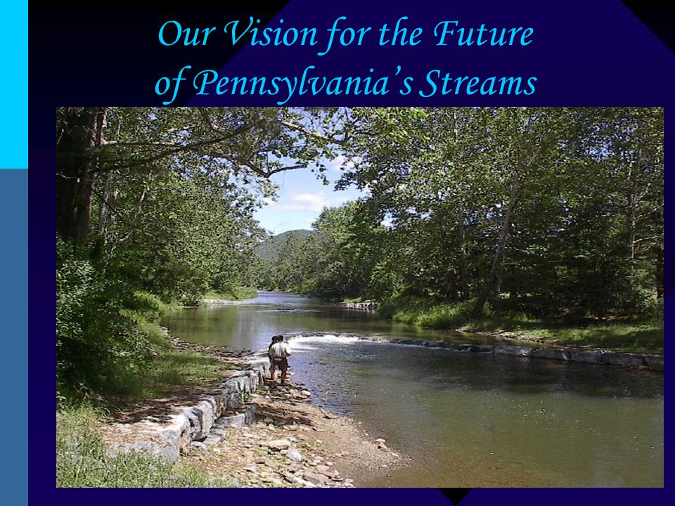 Our Vision for the Future of Pennsylvania's Streams