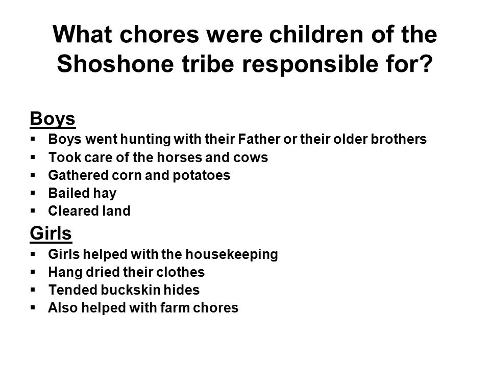 What chores were children of the Shoshone tribe responsible for.