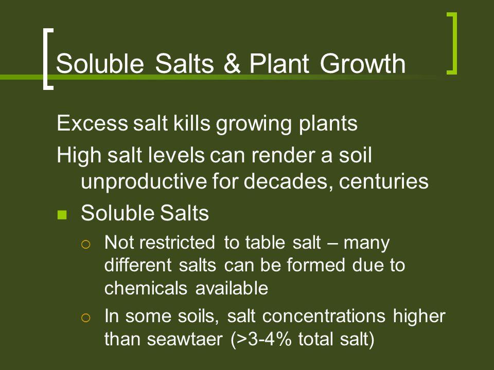 Soluble Salts & Plant Growth Excess salt kills growing plants High salt levels can render a soil unproductive for decades, centuries Soluble Salts  N