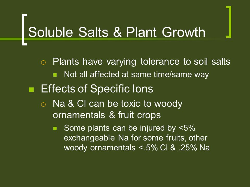 Soluble Salts & Plant Growth  Plants have varying tolerance to soil salts Not all affected at same time/same way Effects of Specific Ions  Na & Cl c