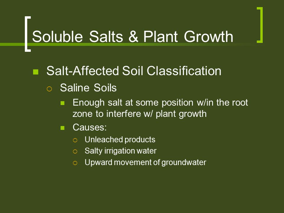 Soluble Salts & Plant Growth Salt-Affected Soil Classification  Saline Soils Enough salt at some position w/in the root zone to interfere w/ plant gr